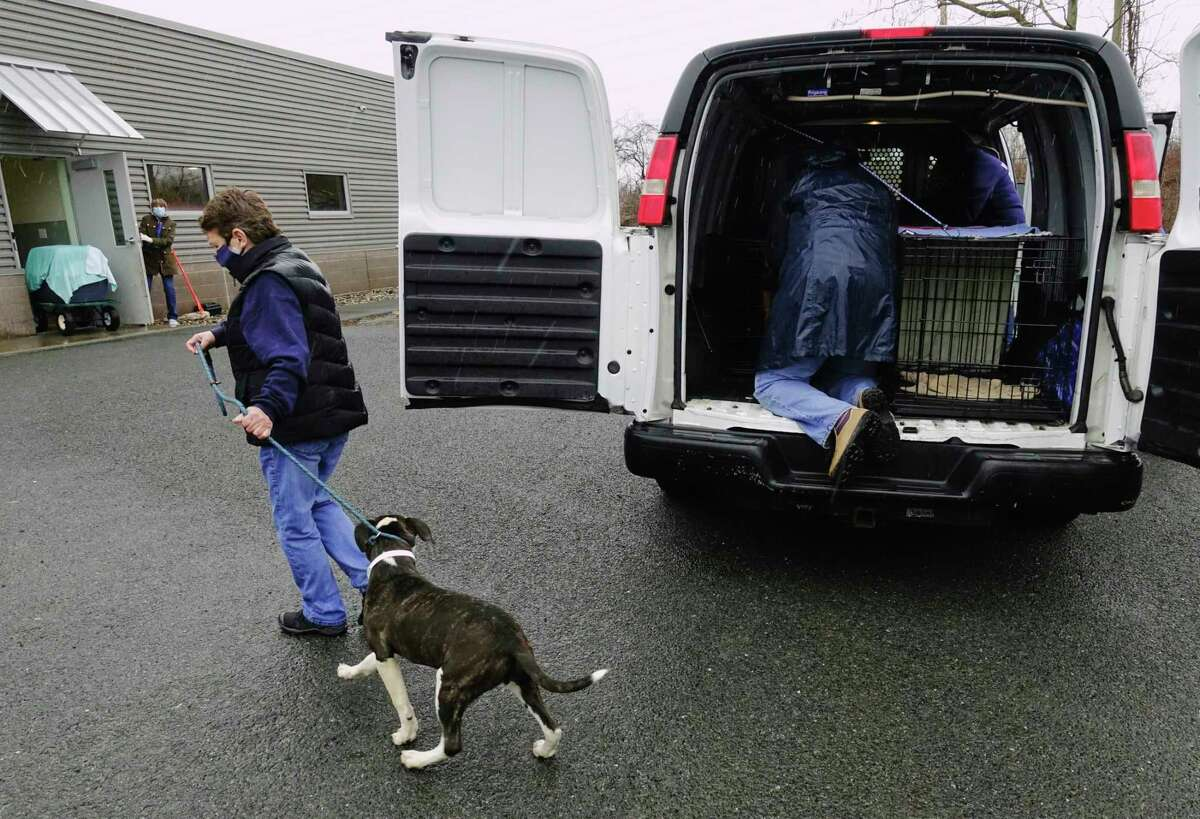 Staff and volunteers with the Mohawk Hudson Humane Society unload dogs and cats they took in from the Greater Birmingham Humane Society on Sunday, March 28, 2021, in Menands, N.Y. The shelter in Birmingham needed to free shelter space in order to help animals displaced by the tornado and to be able to provide temporary shelter to families in crisis. Over 30 animals were brought up to the greater Capital Region with the majority coming to Mohawk Hudson Humane Society and some going to the Montgomery SPCA and some to APF. Ashley Jeffrey Bouck, CEO of Mohawk Hudson Humane Society, said that when the animals are available for adoption they will be listed on the shelter's website and those interested in adopting an animal should visit www.MohawkHumane.org to set up an appointment to visit the shelter. (Paul Buckowski/Times Union)