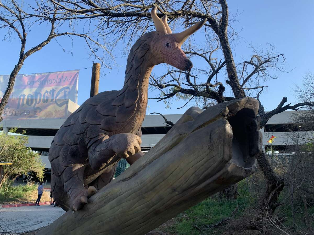 Dragons landed in the San Antonio Zoo, and it's just the bit of escapism we need.
