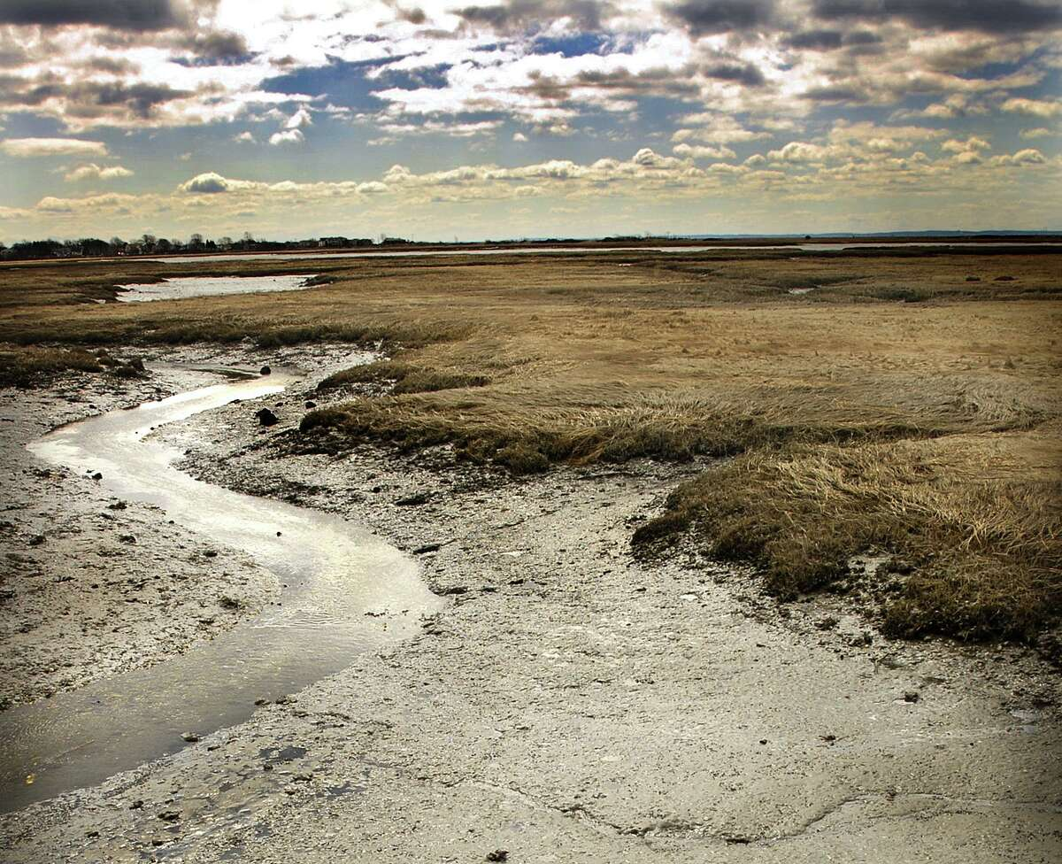A file photo of the Great Meadows Marsh at the wildlife refuge in Stratford, Conn.