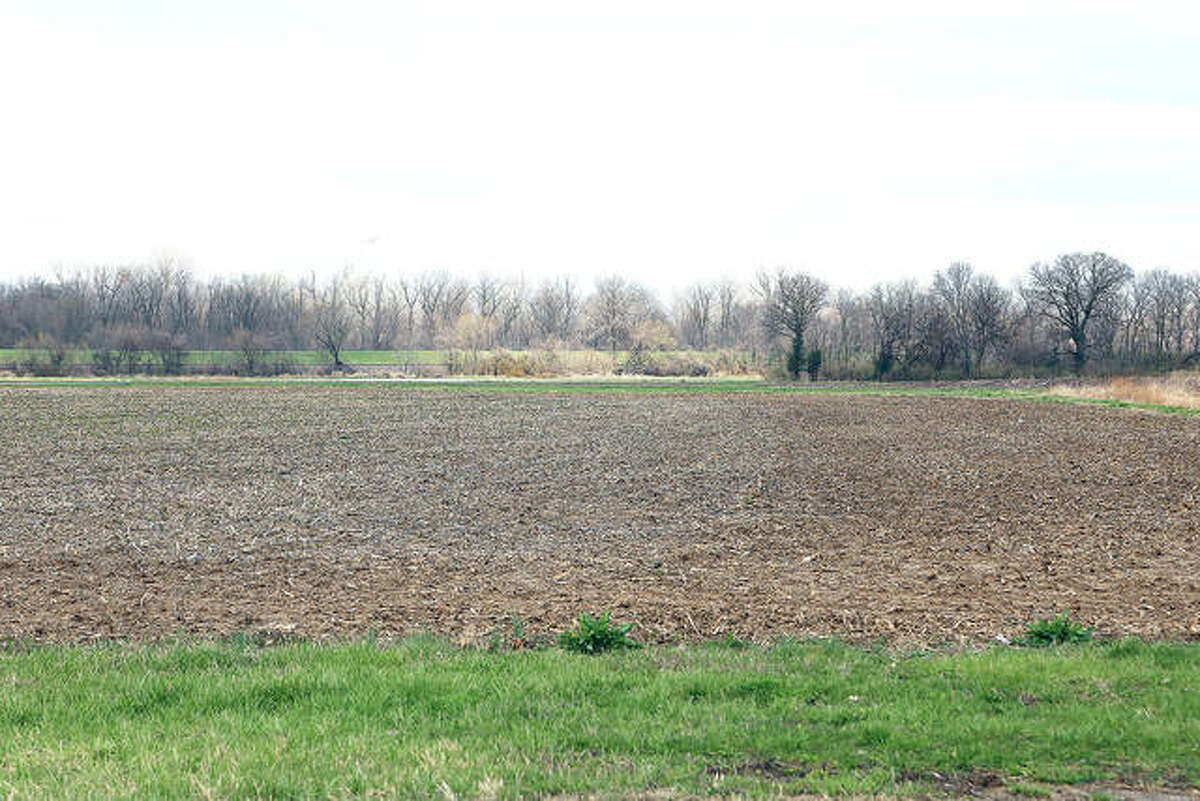 This fallow farmland along New Poag Road, east of Cahokia Creek, may become Edwardsville's newest subdivision, Bluff Falls.