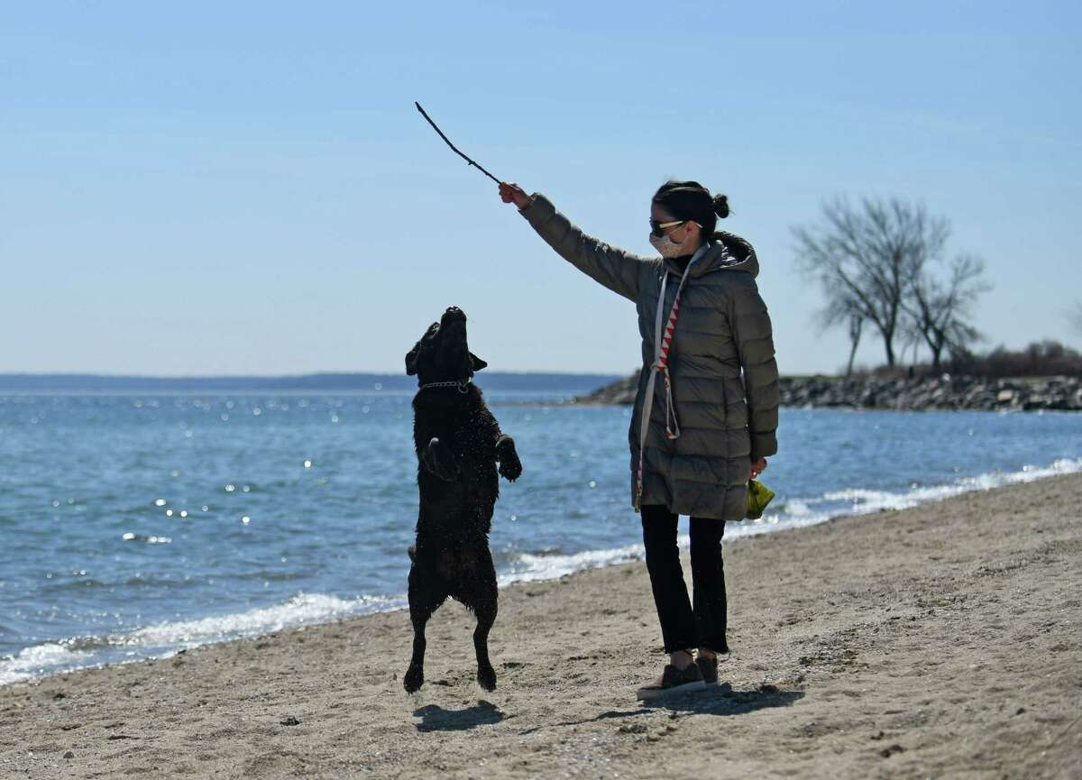 A woman plays with her dog, Hank, on the beach at Greenwich Point Park in Old Greenwich, Conn.