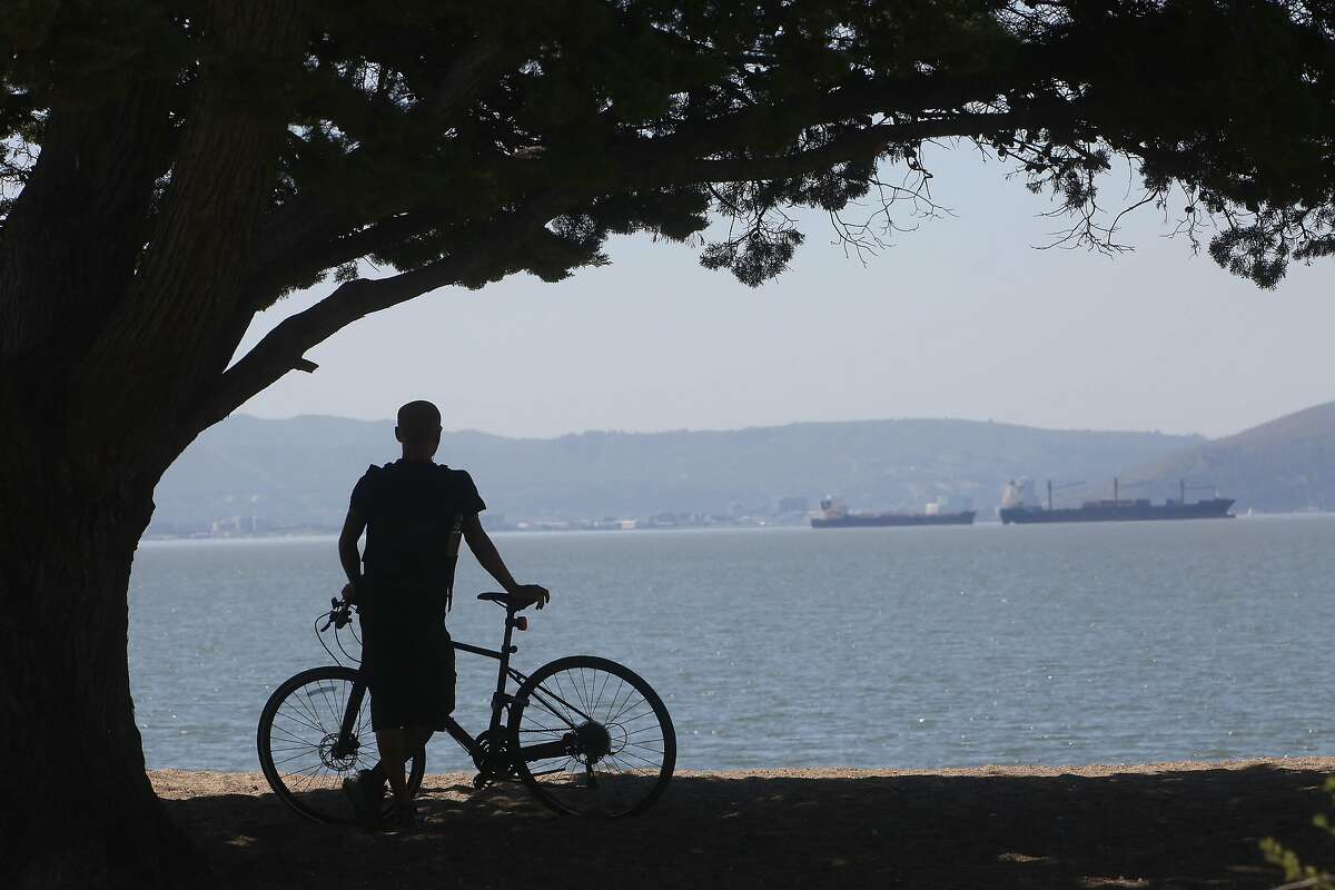 Haseeb Naweed of Alameda takes in the view of the bay at Robert W. Crown Memorial State Beach in Alameda on March 30, 2021.