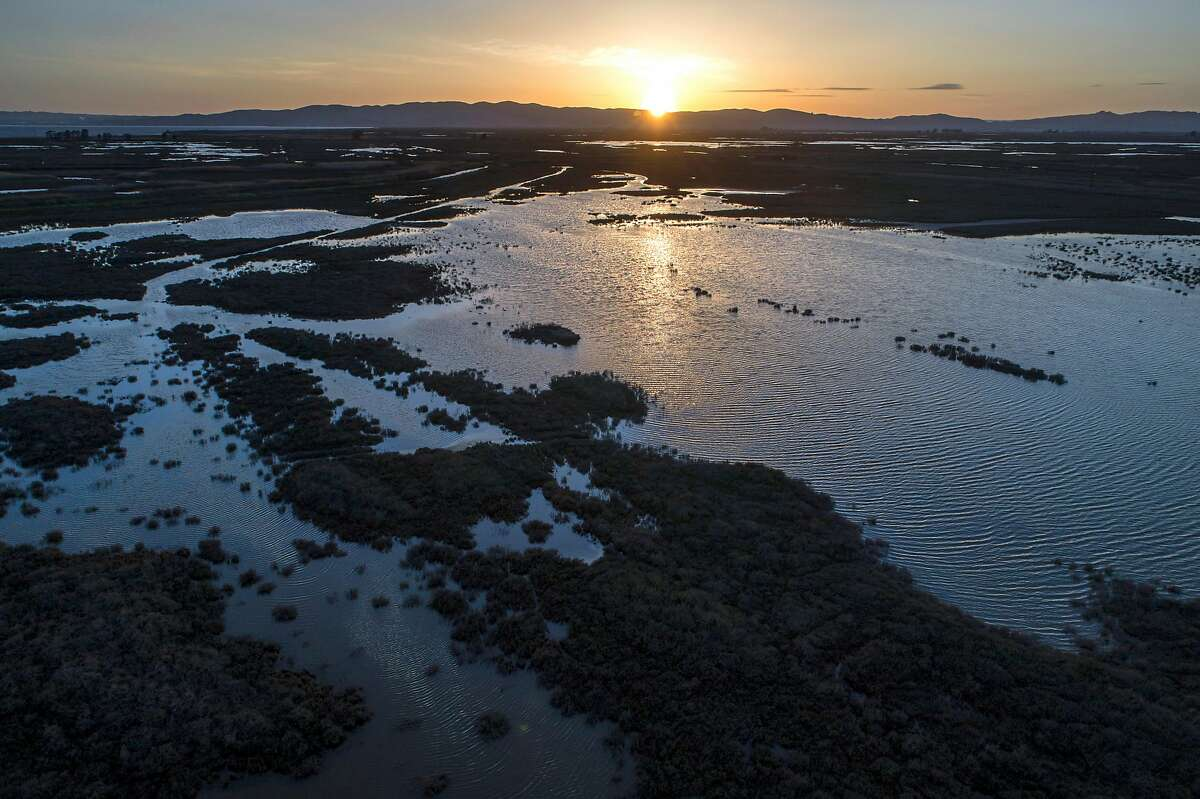 An aerial view of Grizzly Island in Suisun Marsh outside Fairfield, Calif., on Monday, March 22, 2021.Suisun Marsh is the largest contiguous brackish marsh on the west coast of North America, and a local energy company is looking to begin exploratory drilling for natural gas near Montezuma Slough.