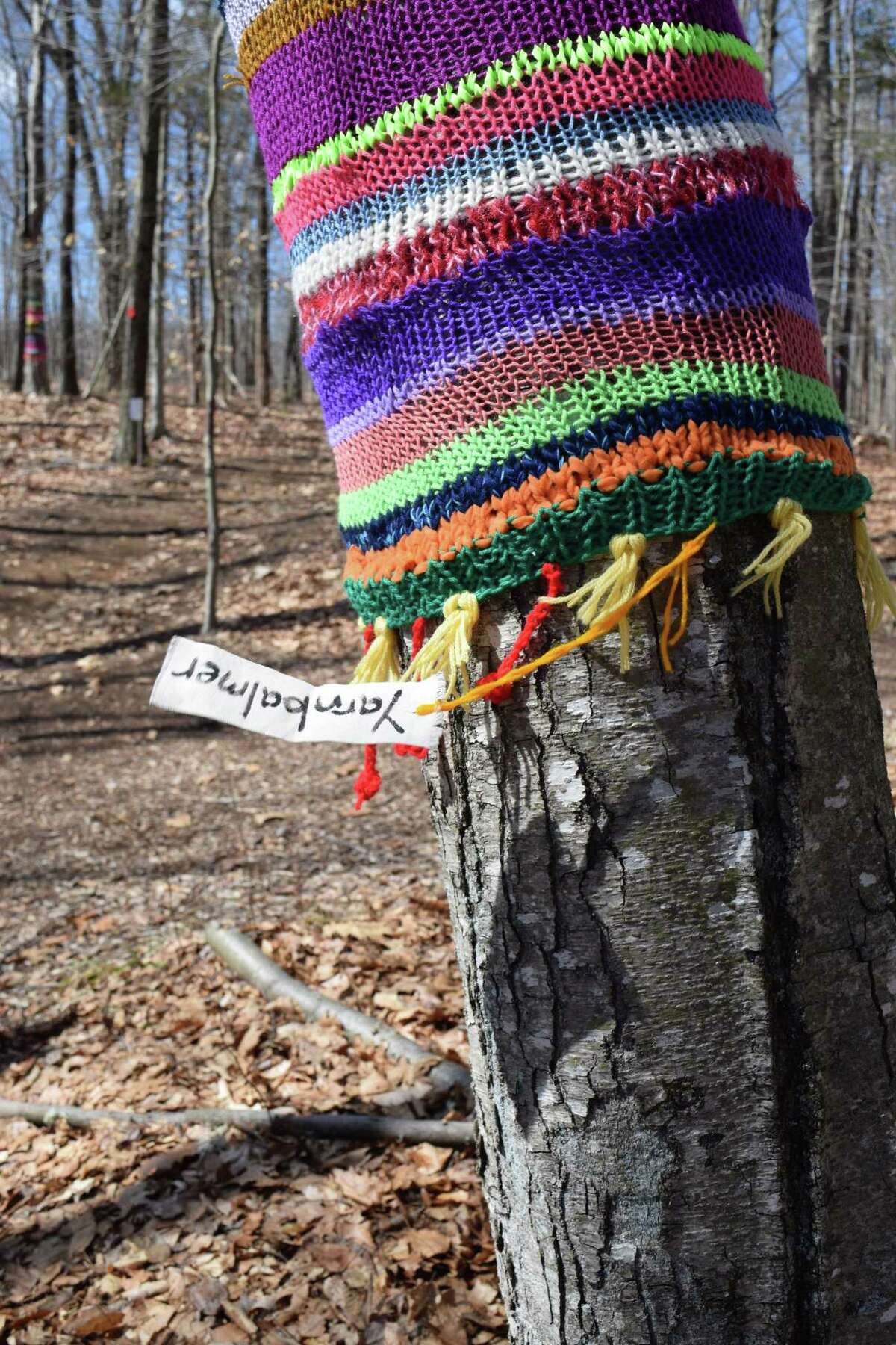 """Beginning in April, hikers can expect a bit more decoration on the trees at the Woodcock Nature Center in Wilton. An artist known as """"Yarnbalmer"""" has installed crocheted yarn art along a familiar section of trail at the center, at 54 Deer Run Road in Wilton."""