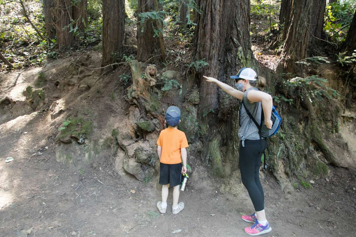 Jennifer Griest points out for her son Quentin one of the trolls, named Bebe, along the Bridgeview Trail on March 31, 2021, in Oakland, Calif.