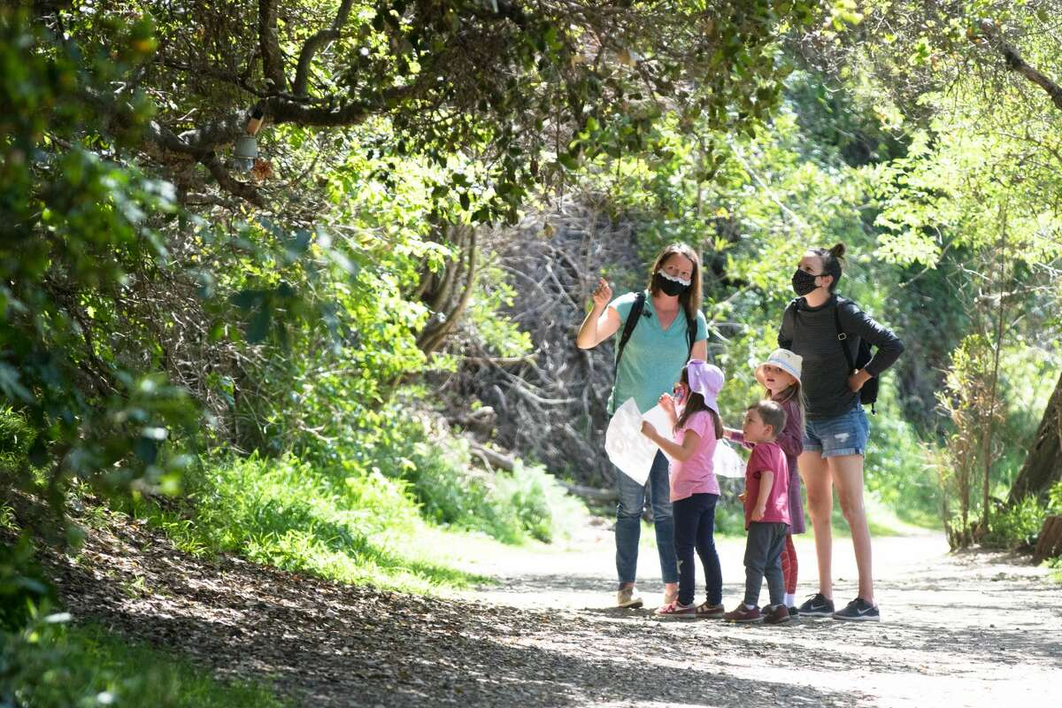 A group of kids and parents search for the trolls along the Bridgeview Trail on March 31, 2021, in Oakland, Calif.