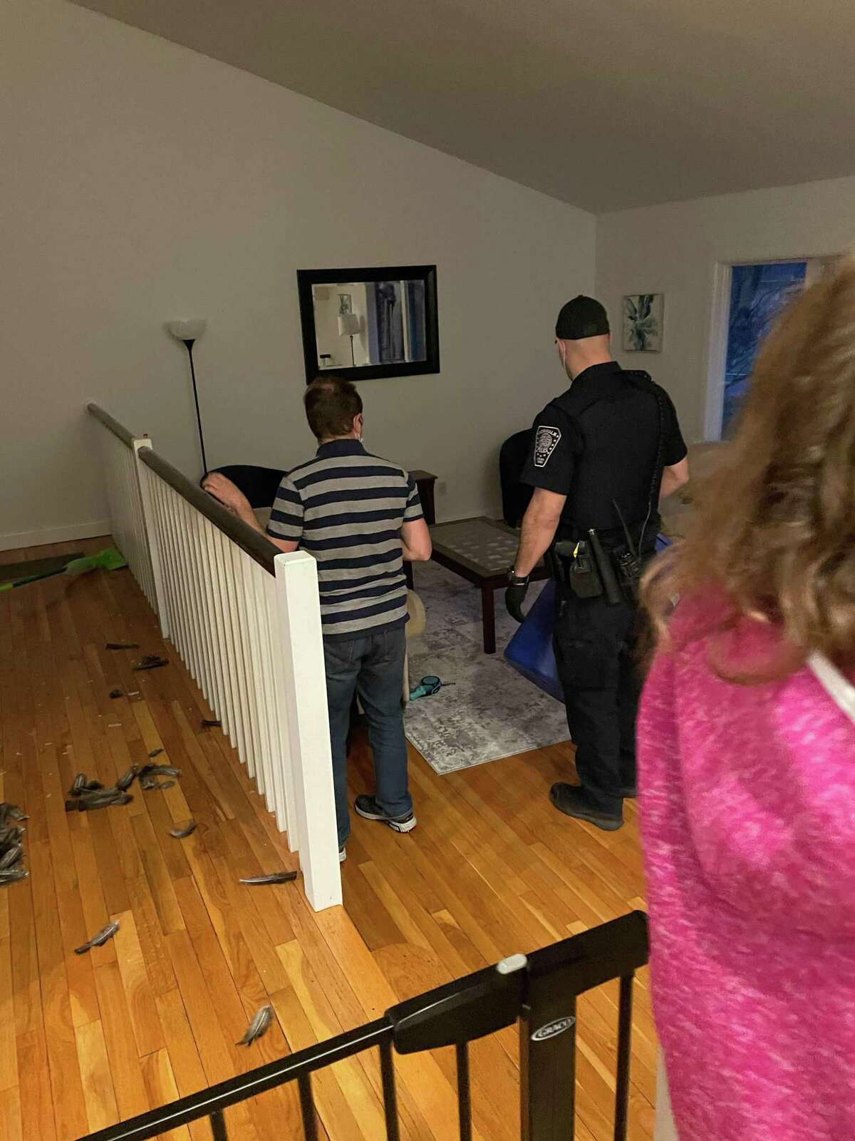 Norwalk Police Officer Andrew Roncinske helps Norwalk resident Jason Gonias remove a wild turkey, below right, from the Gonias' home on Mar. 26. Below left, the wild turkey crashed through the dining room window.
