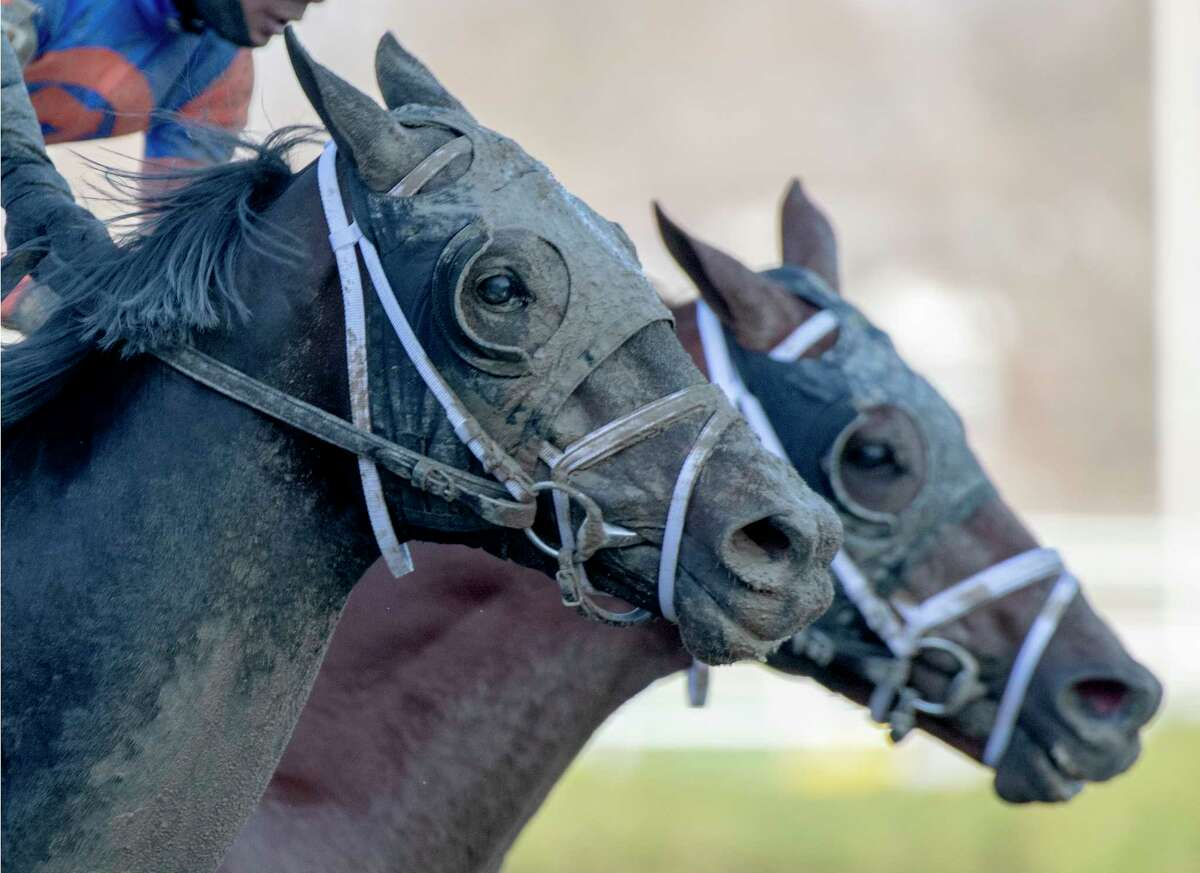 Bourbonic foreground out noses Dynamic One(background) to win the 96th running of The Wood Memorial April 3, 2021 at Aqueduct Race Track in Queens, NY. Photo Special to the Times Union by Skip Dickstein