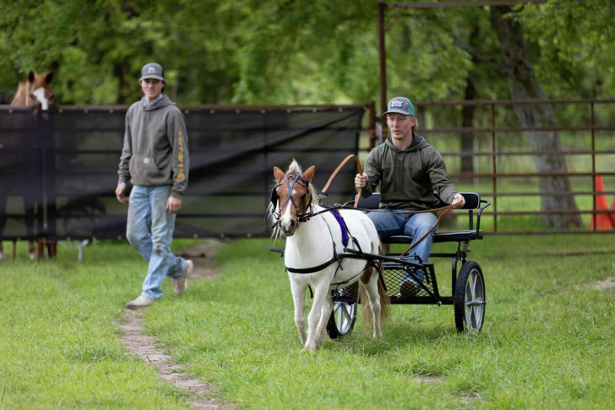Micah Mock, right, takes a ride out with Ruby, a miniature horse at P-6 Farms, Saturday, April 3, 2021, in Montgomery. P-6 Farms has operated in the area for the last 10 years and is open year round offering a variety of themed events.