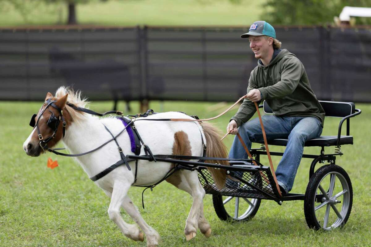 Micah Mock, takes a ride out with Ruby, a miniature horse at P-6 Farms, Saturday, April 3, 2021, in Montgomery. P-6 Farms has operated in the area for the last 10 years and is open year round offering a variety of themed events.