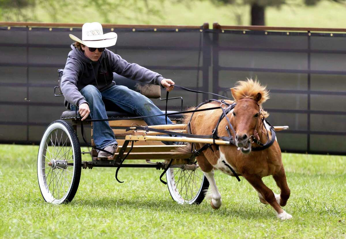 Jackson Poole rides out participates in a miniature horse race with Clyde at P-6 Farms, Saturday, April 3, 2021, in Montgomery. P-6 Farms has operated in the area for the last 10 years and is open year round offering a variety of themed events.