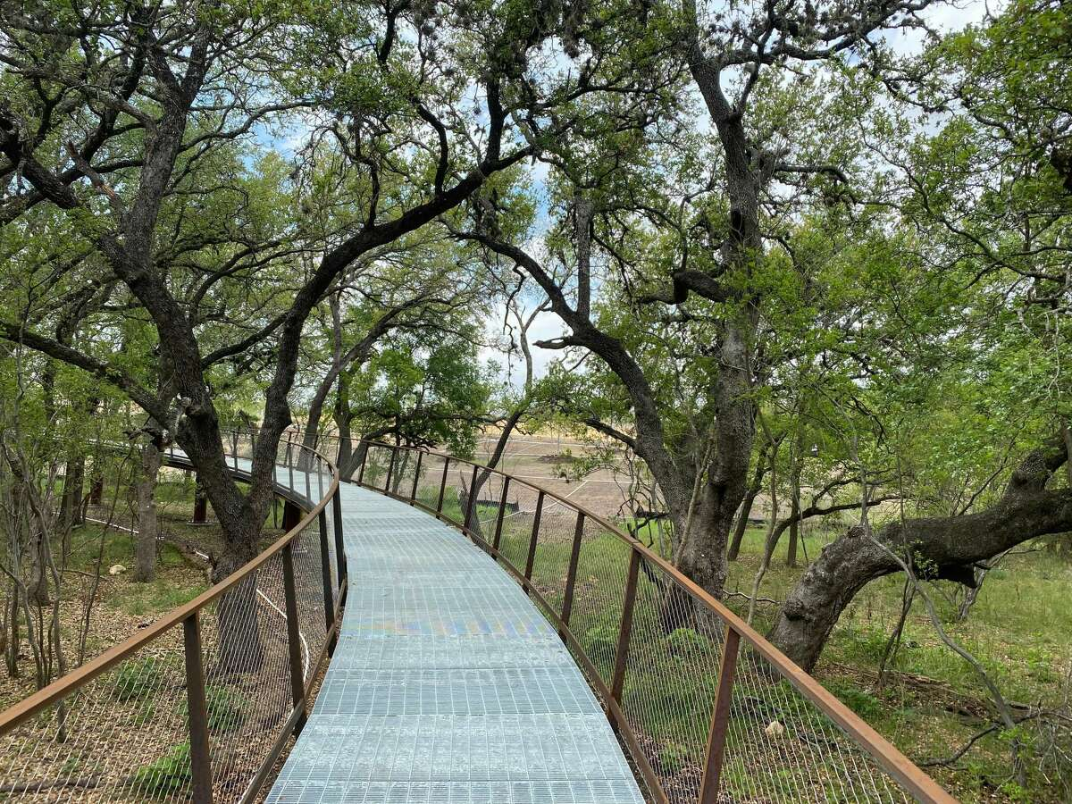 Its elevated walkway climbs 18 feet off the ground, offering spectacular views of the tree canopy and connecting pedestrians to the Land Bridge, which opened in December 2020.