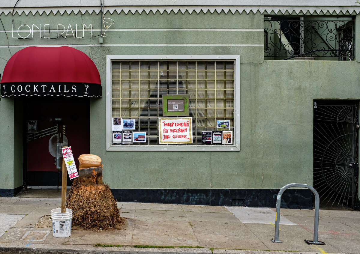 The Lone Palm, a bar on Guerrero Street, San Francisco chopped down its namesake tree due to rot on April 3, 2021. The pieces of wood leftover are up for grabs, according to neighbors.