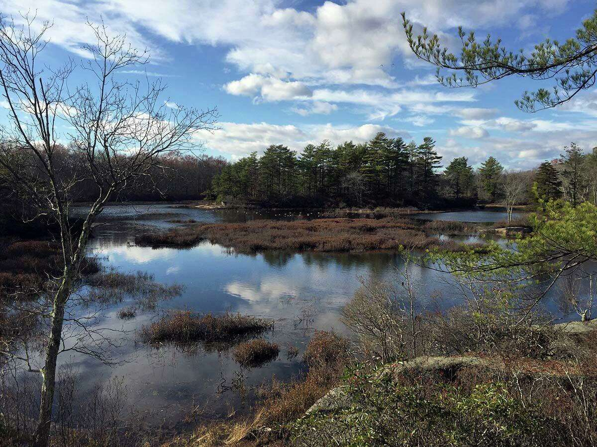There are several spectacular and scenic marshes along the trail.