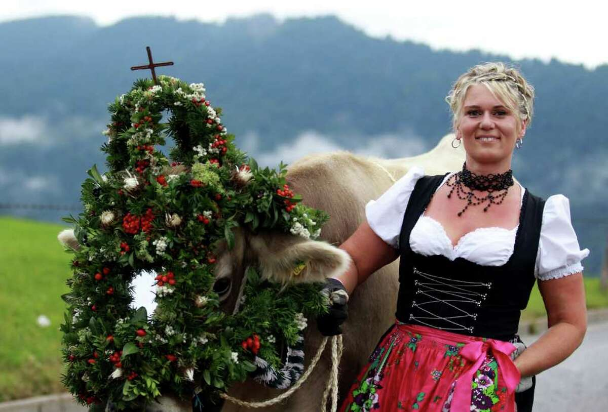 OBERSTAUFEN, GERMANY - SEPTEMBER 10: A woman wearing a Bavarian dirndl dress walks with a decorated cow on September 10, 2010 in Oberstaufen, Germany. Up to 1200 cattle returned to the valley after spending the summer months in the mountains. The alpine farmers decorate one cow of the herd when all the cows return well from the mountains. (Photo by Miguel Villagran/Getty Images)