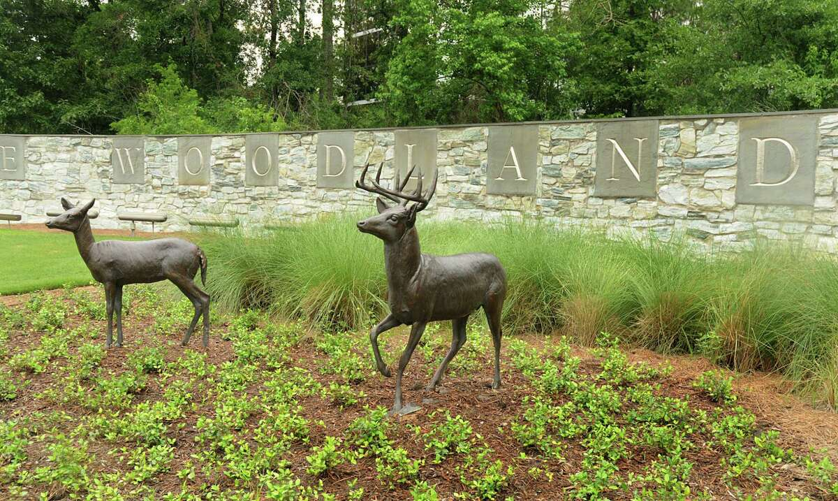 """""""The Whitetail Deer"""" sculpture, located on The Woodlands Parkway at Many Pines, in The Woodlands. Photo by David Hopper"""