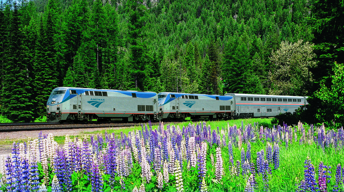 An Amtrak long-distance train travels through the lush forests and wildflower meadows of the Pacific Northwest.