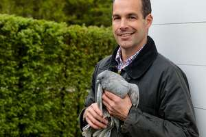 Spitzmiller is a bird lover, and has a range of feathered friends at Clove Brook Farm, including peafowl, pigeons, geese and chickens.