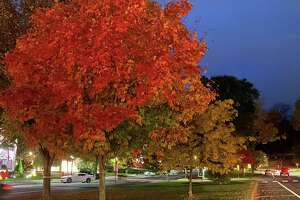 Spectrum/The autumn foliage throughout the Greater New Milford area is always striking. Above, early evening light and lampposts illuminate the colorful foliage of the trees on the Village Green in New Milford. October 2020