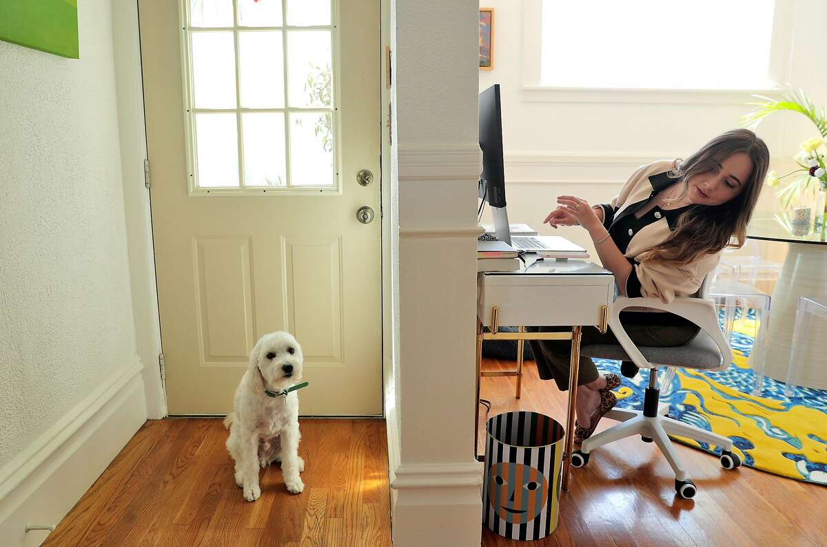 Rira Raisi checks her dog, Pablo, while working at home. Raisi hopes to return on a hybrid office-and-home work schedule.
