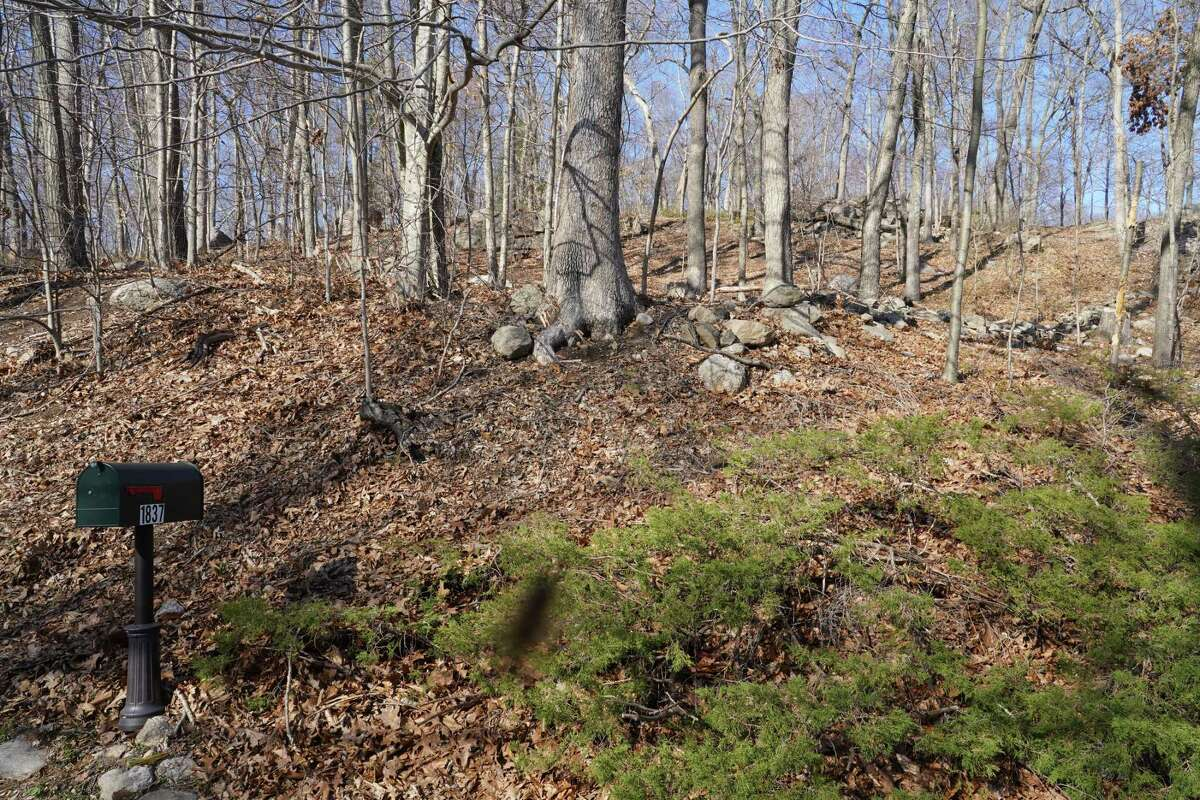This private land at 1837 Ponus Ridge is the proposed location for a new cell tower that is anticipated to improve cell coverage in the northwest corner of town. It will hold public safety antennas as well as cell phone carrier apparatus. The picture was taken April 2021.