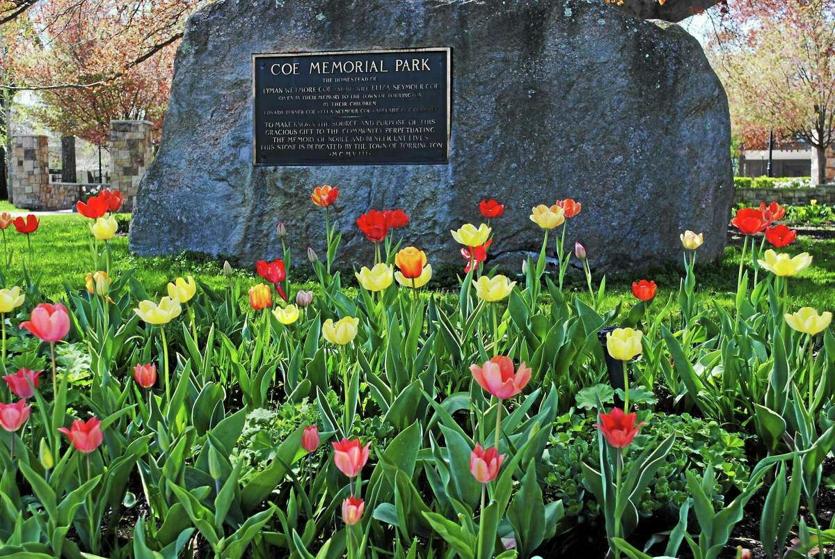 Torrington's Earth Day cleanup on April 24 starts from Coe Memorial Park, where volunteers can pick up gloves and trash bags starting at 9 a.m.