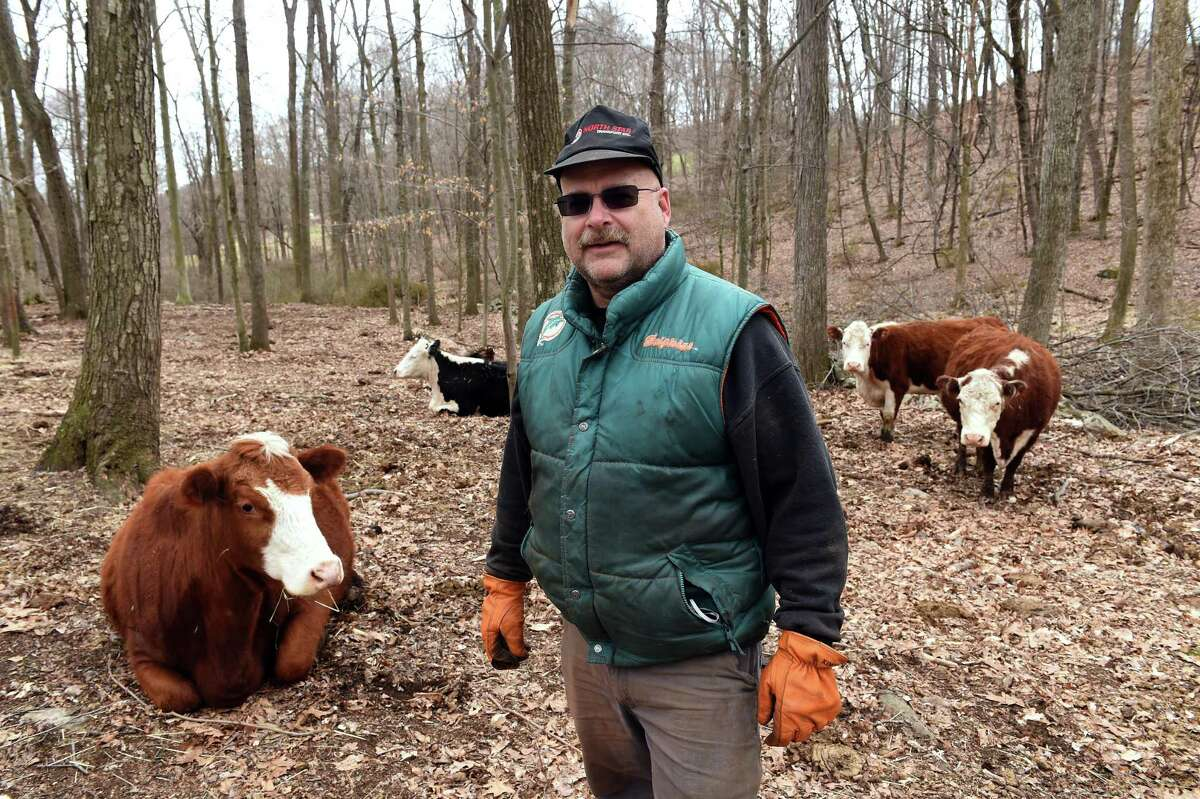Jeffrey Manville photographed with some of his cattle at Manville Farm in Southbury on April 2, 2021.