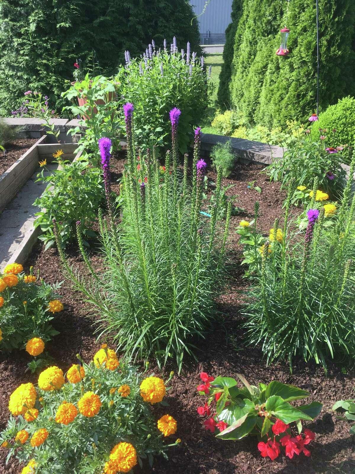 Galileo's Garden at New Milford High School