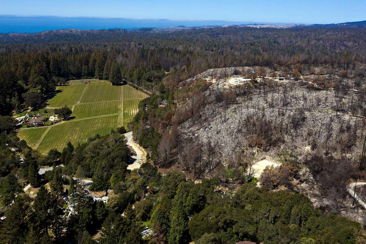 Remnants of the CZU fire borders untouched land near Pine Flat Road and Bonny Doon Road in Santa Cruz.