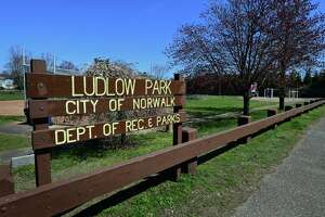 Ludlow Park Thursday, April 8, 2021, in Norwalk, Conn. Norwalk received grant funding to provide new trees at the park.