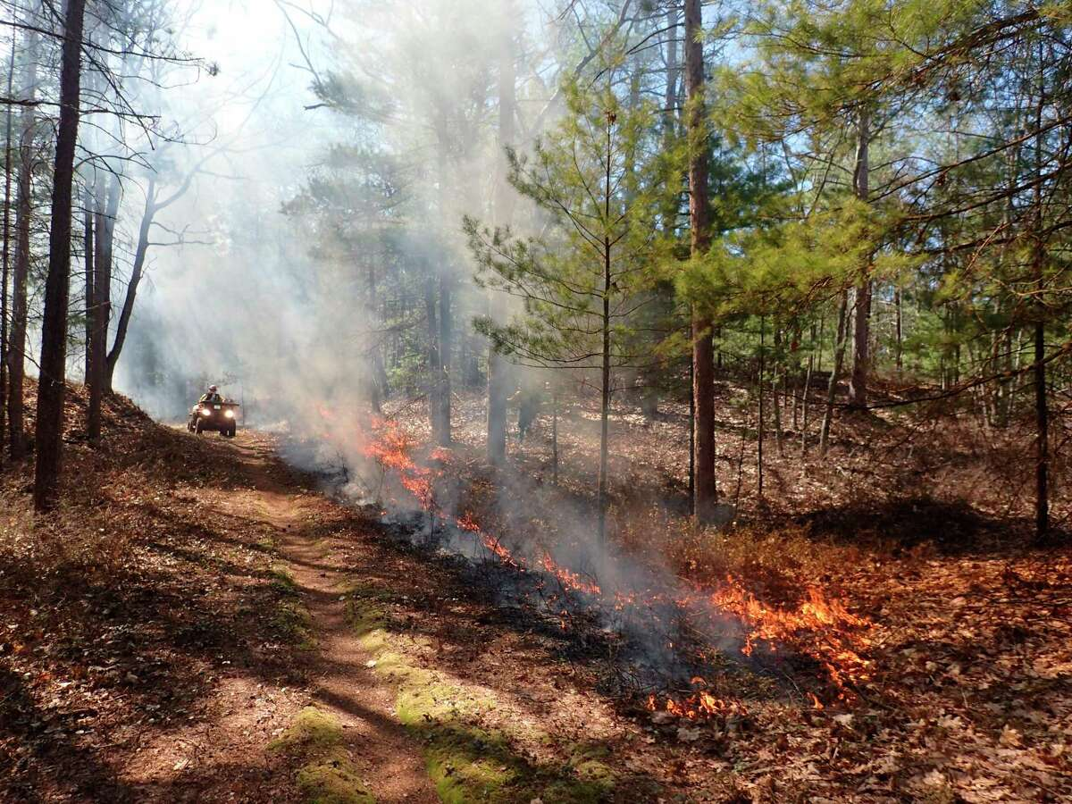 Prescribed fire is a management tool used to maintain healthy ecosystems, replenish fire dependent ecosystems, reduce available fuels in the event of wildfire, and assist with the management of invasive species. (Courtesy Photo)