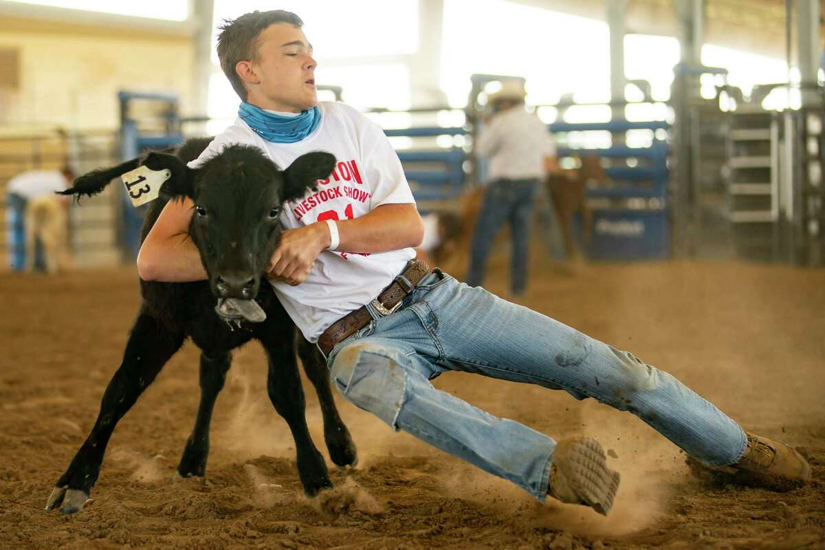 Jared Wade Gardner, with Troup FFA, tries to hold onto a calf during a Houston Livestock Show and Rodeo calf scramble, Saturday, April 10, 2021, inside Katy Independent School District's rodeo arena in Katy. Traditionally the calf scramble is held each night during the Houston Livestock Show and Rodeo at NRG Stadium, but this year the calf scramble is being held over two weekends with four scrambles a day to give 4-H and FAA students an opportunity to participate. Fifteen calves are released for each round of 30 students. Students who successfully secure a calf win a $1750 certificate to apply toward the purchase of a registered beef heifer or market steer to exhibit at the 2022 Houston Livestock Show and Rodeo.
