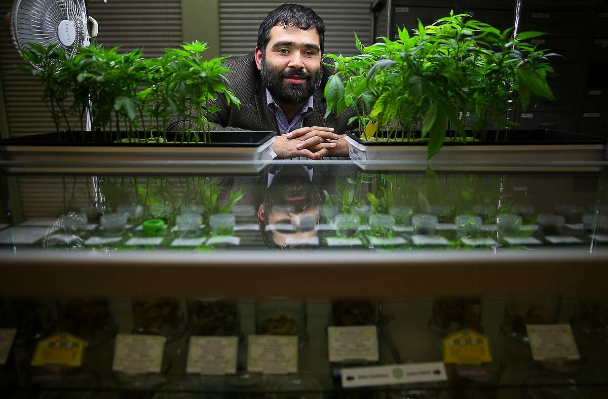 Robert Jacob, as a Sebastopol City Council member in 2015, promoted a resolution to protect the medical cannabis industry.