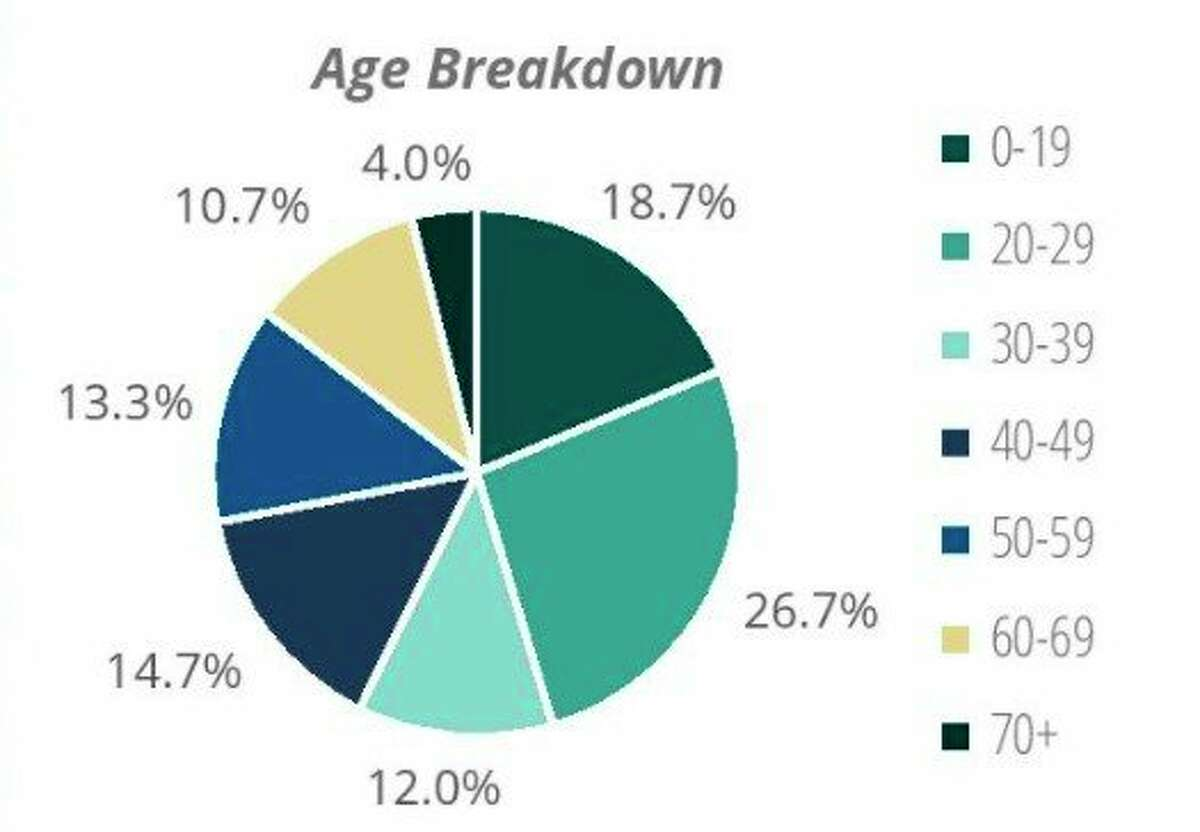 More people under the age of 29 had a case of COVID-19 in Manistee County during March than any other age group according to the DHD#10 county profile. (Screenshot from DHD#10 website)
