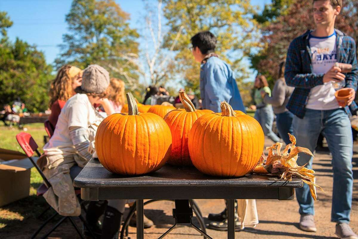Wesleyan University students take part in Pumpkin Fest in 2019.