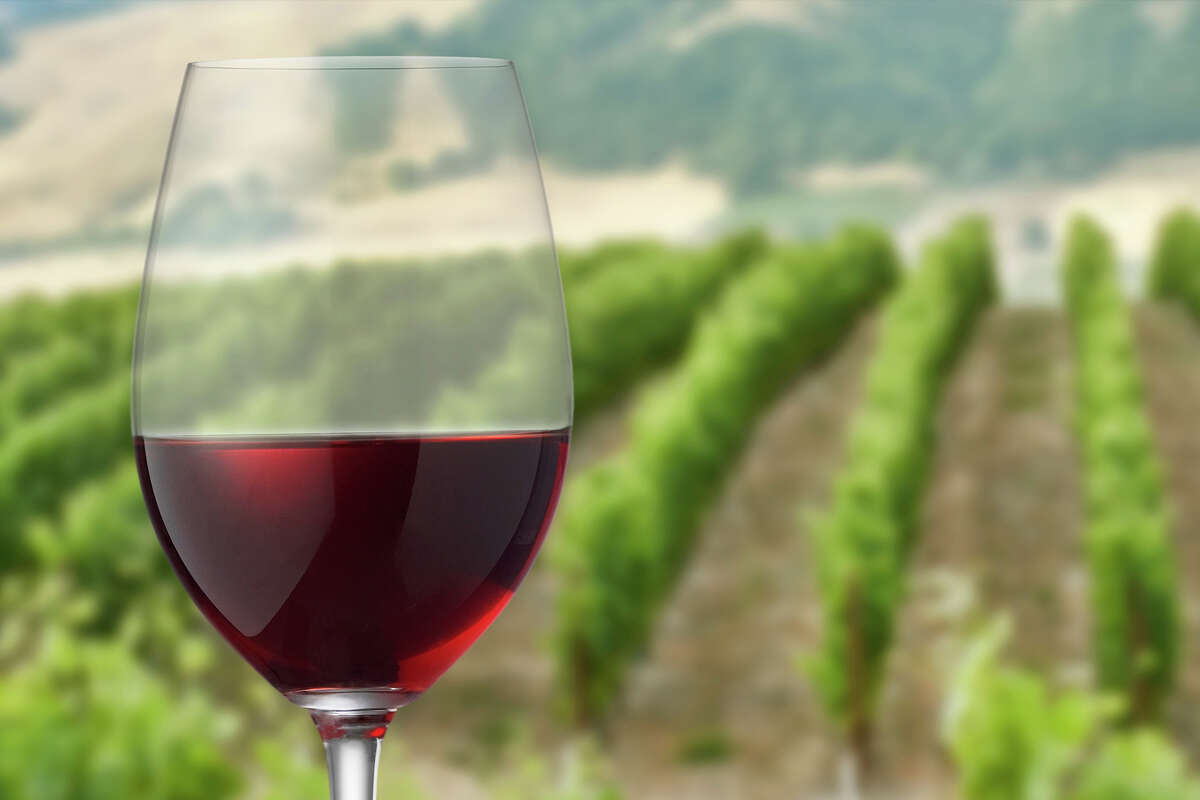 The French and Italian wines offer exceptional value.