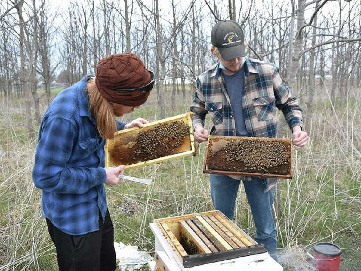 Blackburn College students Dade Bradley, left, and Caleb Rieger repair hives as part of the college's bee effort.