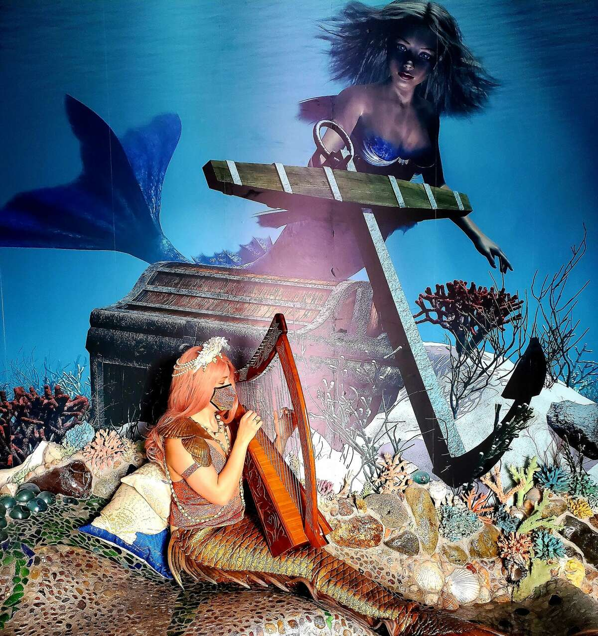 Washington's newest attraction is dedicated to mermaids, ocean ecology