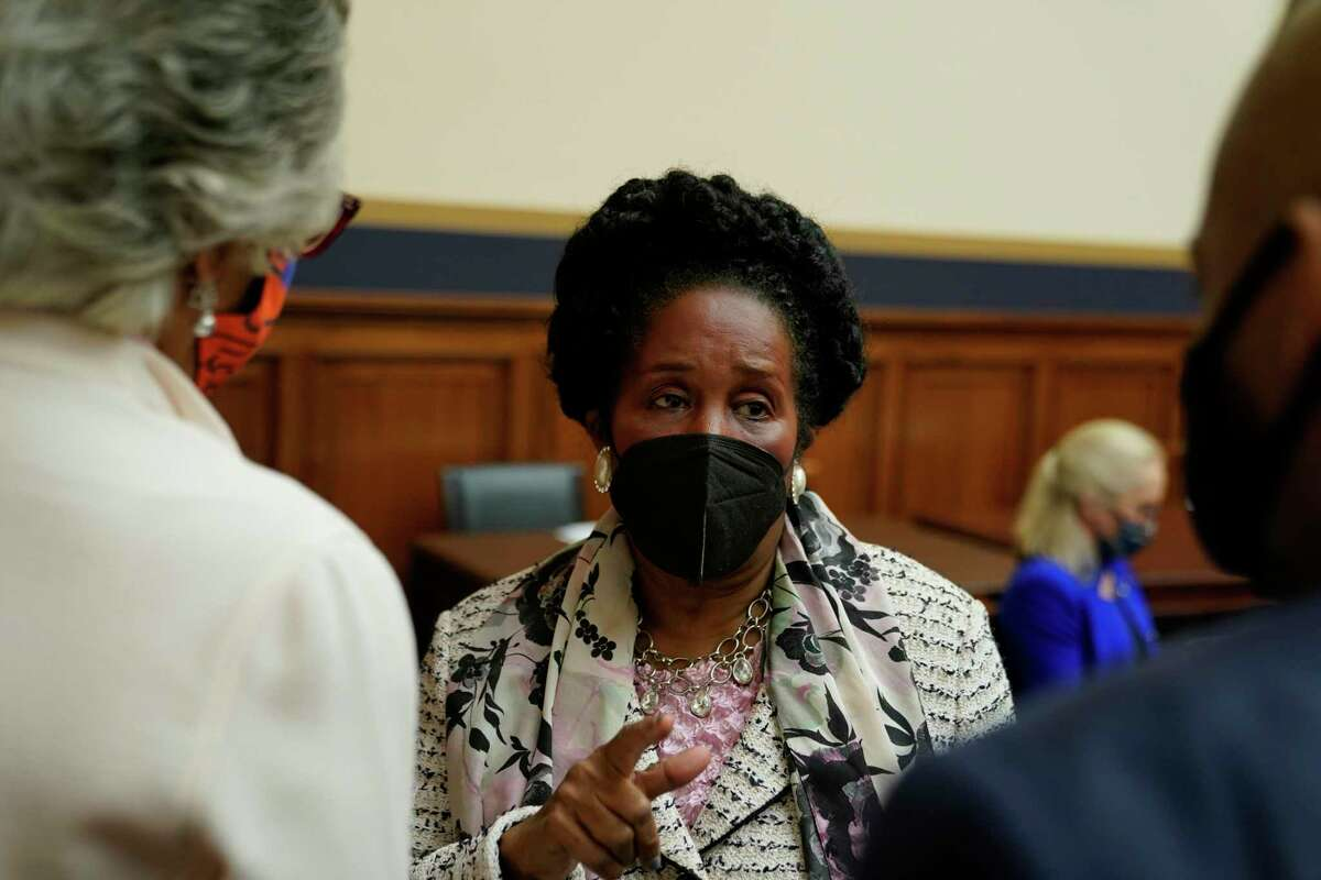 U.S. Rep. Sheila Jackson Lee of Texas is teh lead sponsor of the bill first proposed in 1989.