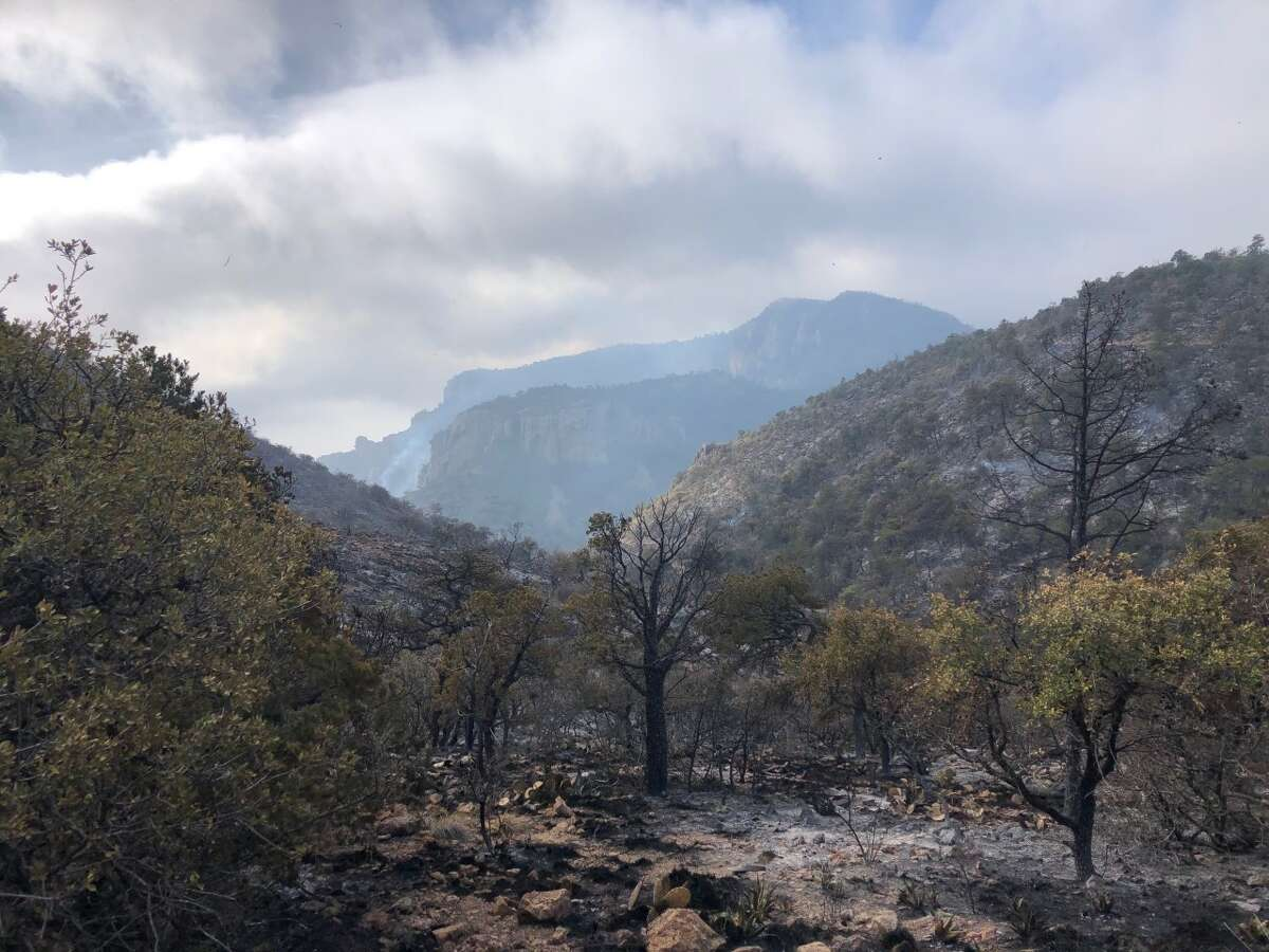 Burned areas caused by a wildfire at Big Bend National Park.