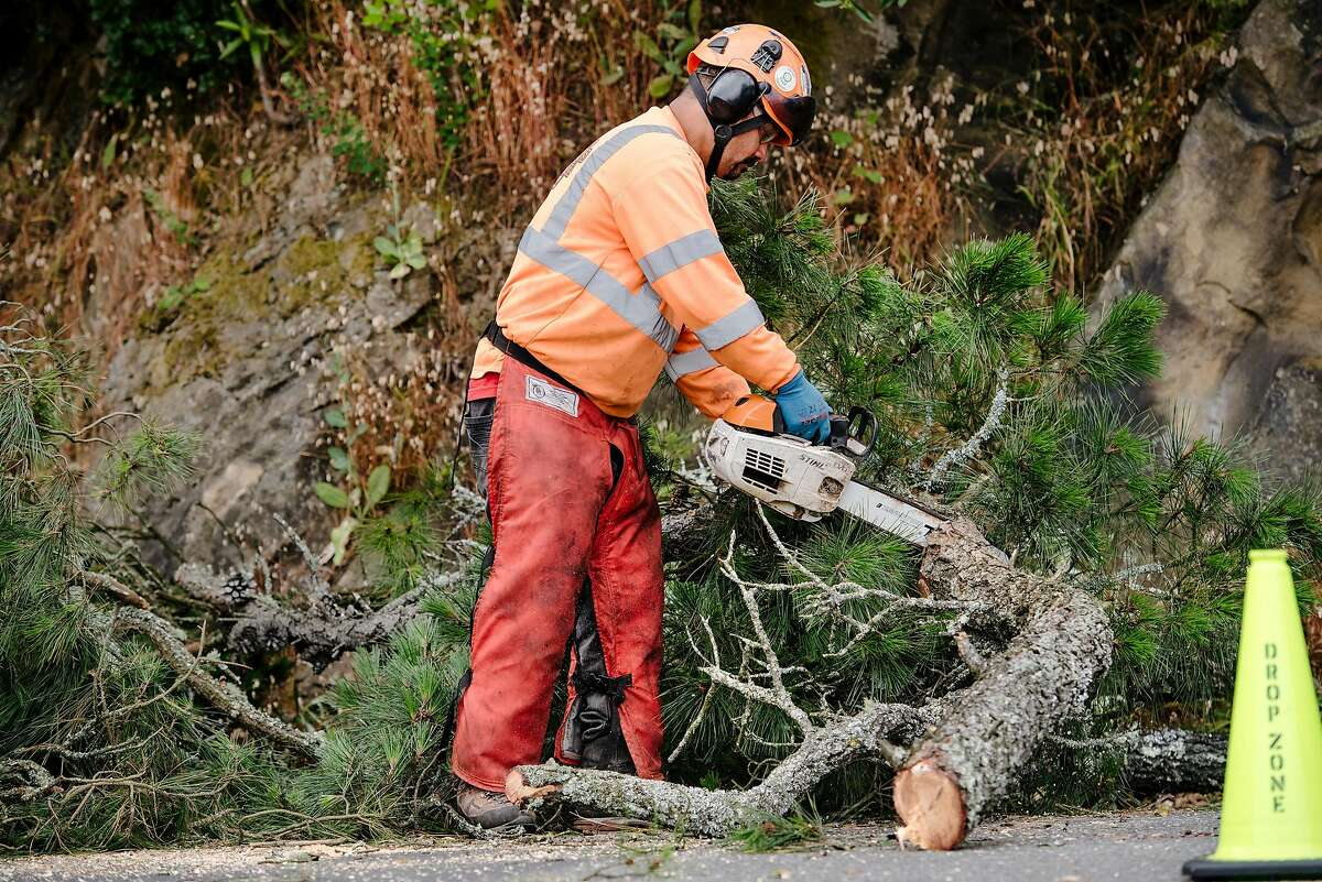 Ismael Lopez with Mowbray's Tree Service, which PG&E contracted to perform vegetation management, cuts up a branch as crews trim back trees near power lines along Skyline Boulevard in Oakland in 2019.