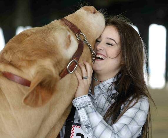 Kaidince King of Conroe High School FFA laughs as her heifer lifts her heads higher for King to scratch her neck before the replacement heifer show at the Montgomery County Fair & Rodeo, Thursday, April 15, 2021, in Conroe. Photo: Jason Fochtman/Staff Photographer / 2021 ? Houston Chronicle