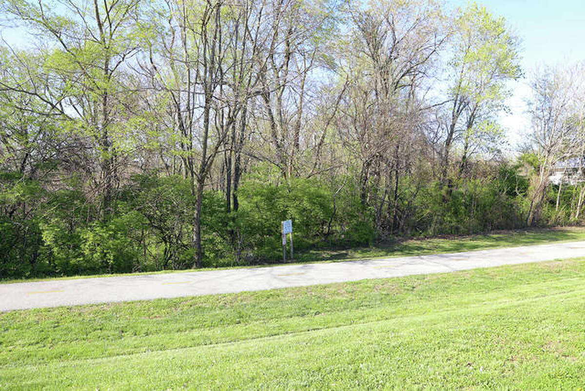 One benefit of Richards Woods will be its proximity to the Nickel Plate Trail at Route 143 and Schwarz Street.