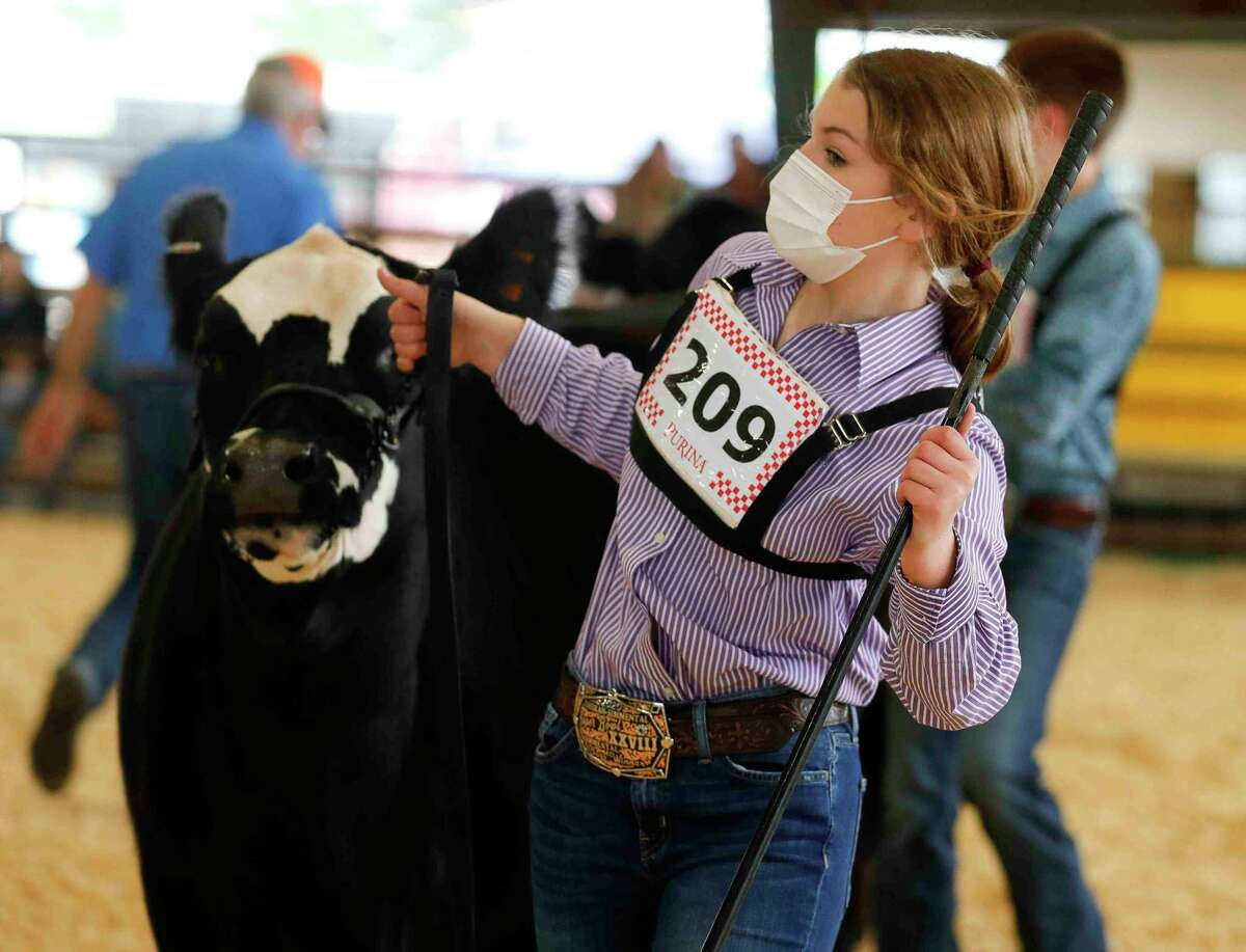 Zoe Romanchuk of Montgomery Dobbin 4-H show her heifer, Trixie Pixie, won grand champion during the replacement heifer show at the Montgomery County Fair & Rodeo, Thursday, April 15, 2021, in Conroe.