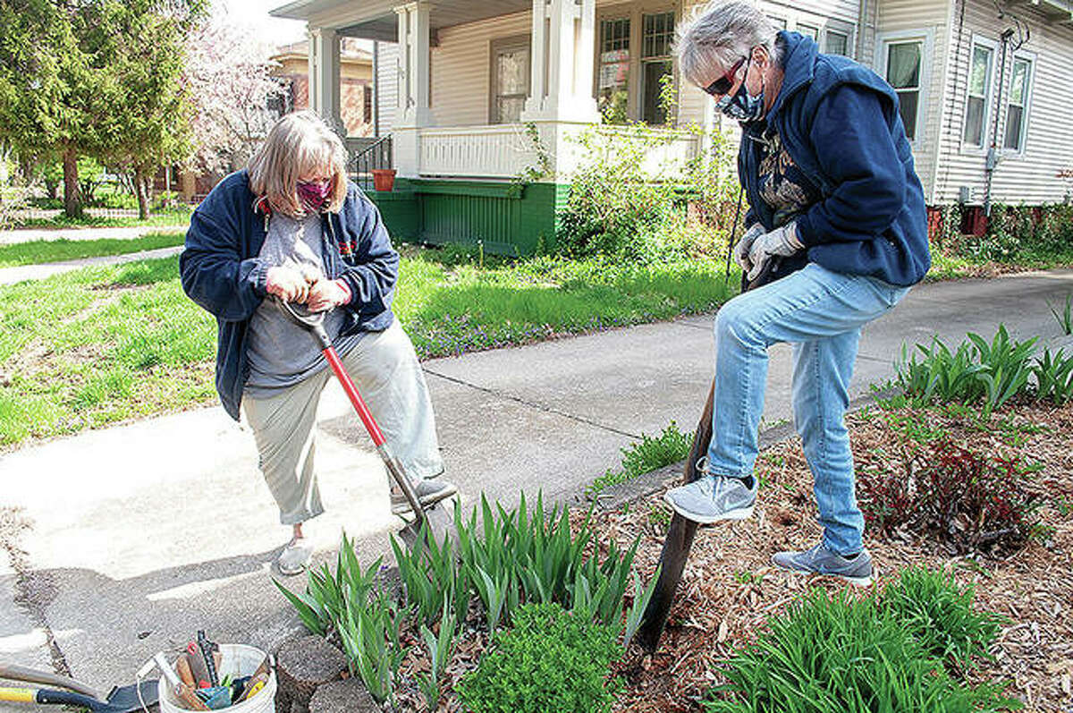 Morgan County Garden Club members Joyce Ginder (left) and Jane Schone dig up plants Thursday in preparation for the club's annual plant sale, which will be from 4 to 6 p.m. Tuesday at Prairie Land Heritage Museum.