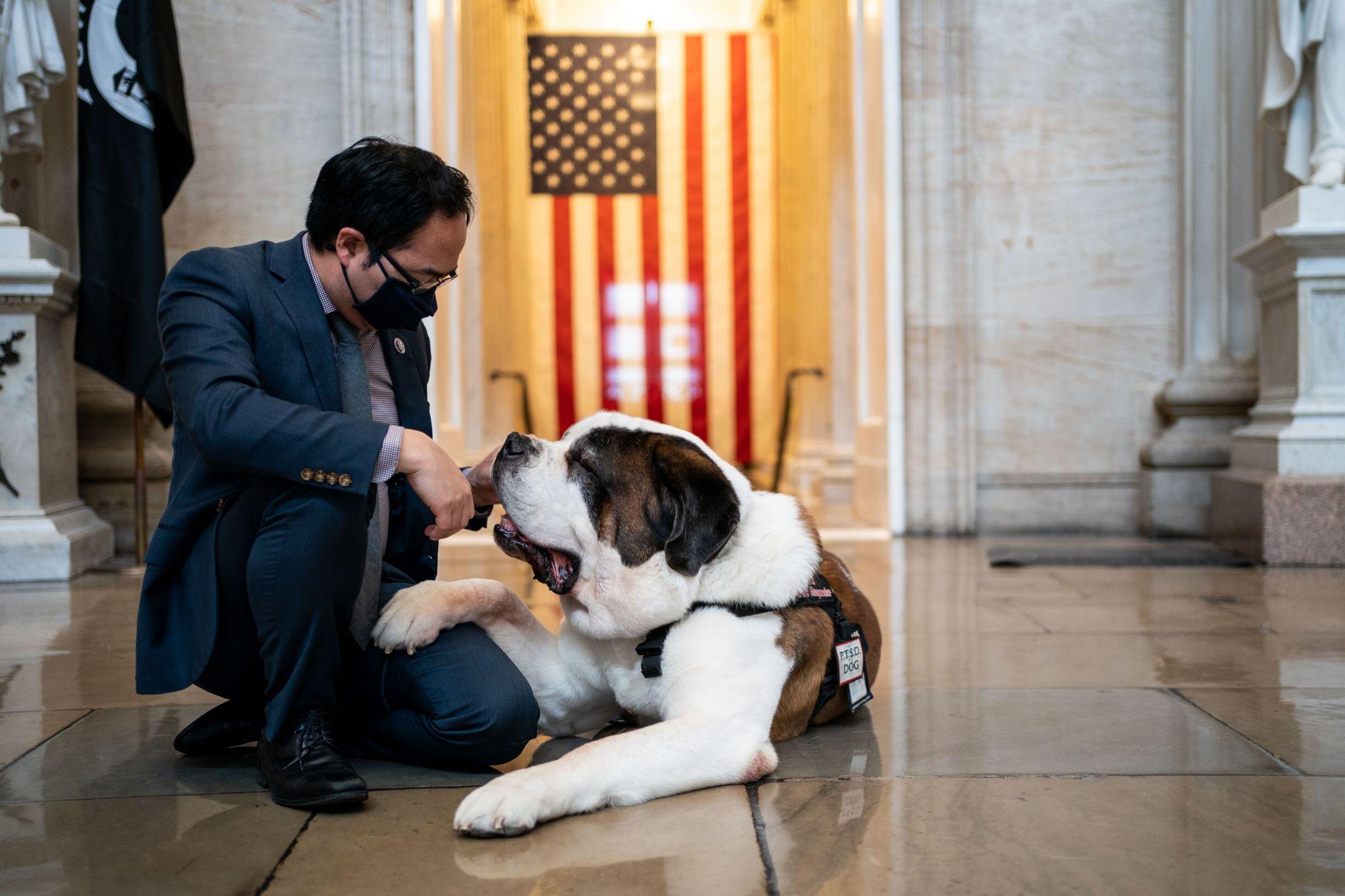 Sen. John Cornyn loves this Capitol comfort dog