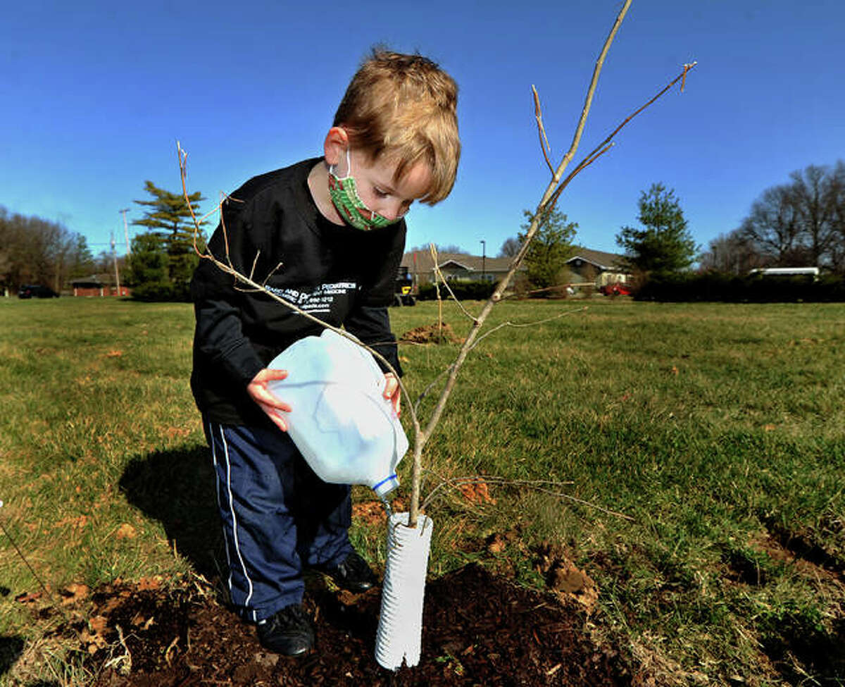 Lucas Thompson, 4, of Edwardsville, waters one of the trees planted by volunteers as part of a micro forest project by the Edwardsville Children's Museum.