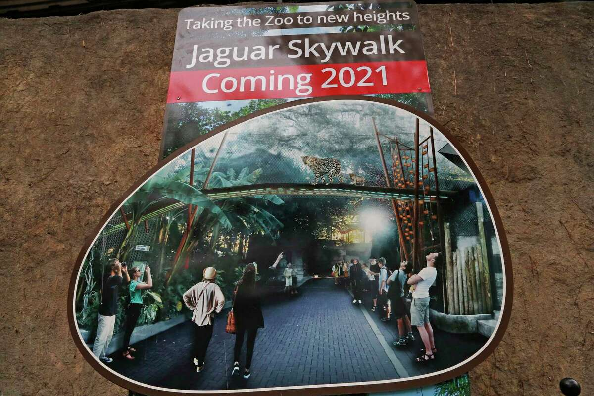 A rendition of a near $1.4 million elevated walkway to allow visitors to peer into the jaguar habitat is on display on Thursday, April 15, 2021