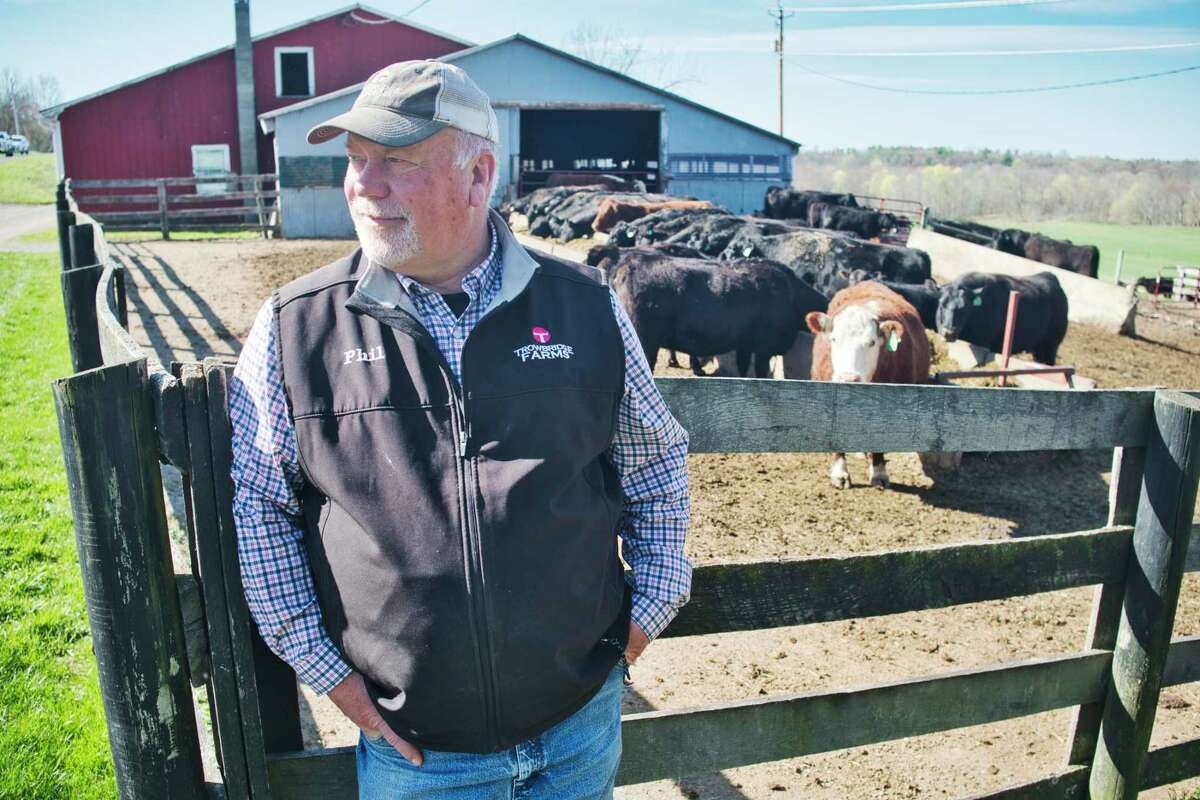 Phil Trowbridge, owner of Trowbridge Farms, at his farm with some of the cows in his herd on Wednesday, April 14, 2021, in Ghent, N.Y. (Paul Buckowski/Times Union)