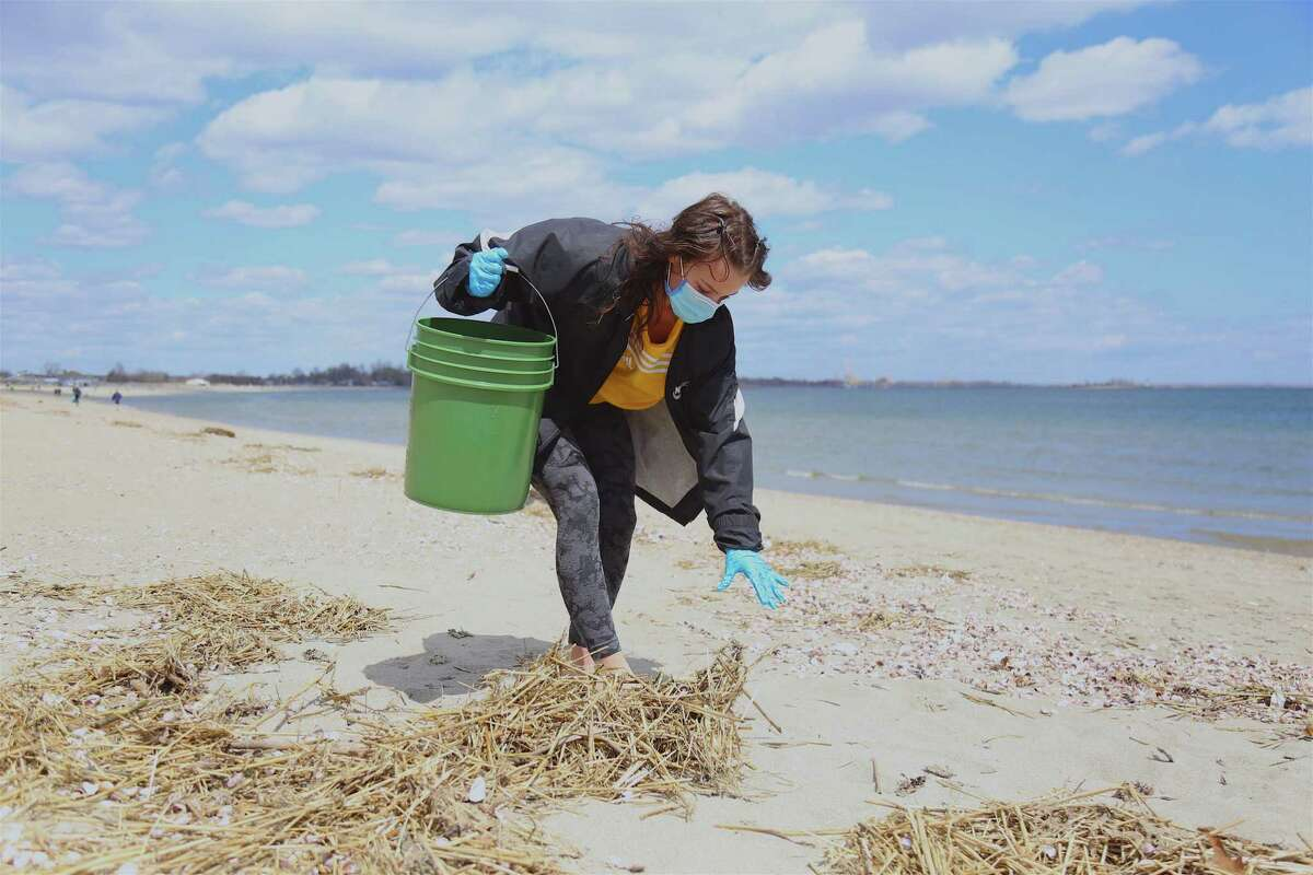 Olivia Beaudoin, of Fairfield, finds something at the cleanup at Penfield Beach on Sunday, April 18, 2021, in Fairfield, Conn.